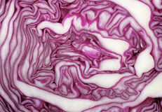Cross section of red cabbage background Royalty Free Stock Photo