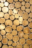 Cross section of the timber. For the background Stock Photo