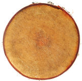Cross section of tree Royalty Free Stock Image