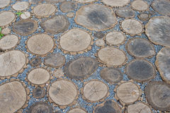 Cross section of a tree abstract background. Playground lined with wooden dies and gravel Stock Photos