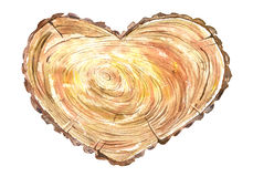 Cross section tree of a heart shaped. Wood slice.Watercolor hand drawn illustration.White background Royalty Free Stock Image