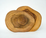 Cross Section of 2 Tree Rings Royalty Free Stock Photo