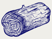 Cross section of tree stump Royalty Free Stock Images