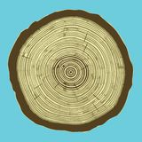 Cross section of tree stump  on blue background, Eps 10 illustration. Stock Photo