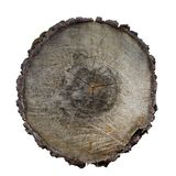 Cross-section of a tree texture royalty free stock photography