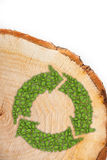 Cross section of tree trunk with recycle symbol Stock Image