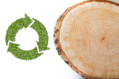 Cross section of tree trunk with recycle symbol Stock Photo