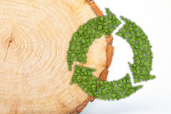 Cross section of tree trunk with recycle symbol Stock Photos