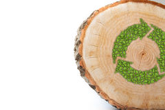 Cross section of tree trunk with recycle symbol Stock Photography