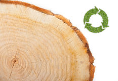 Cross section of tree trunk with recycle symbol Royalty Free Stock Images