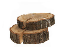 Cross section of tree trunk on white Stock Images
