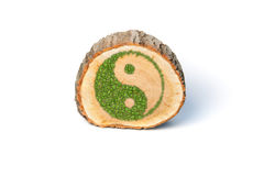 Cross section of tree trunk with Ying yang symbol Stock Images