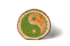 Cross section of tree trunk with Ying yang symbol Royalty Free Stock Photography