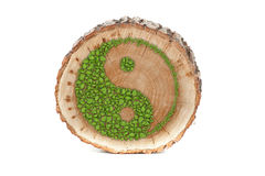 Cross section of tree trunk with Ying yang symbol Royalty Free Stock Photos
