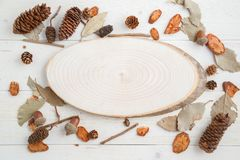 Cross-section of a tree on a wooden background in autumn style . top view with space for text.  stock image