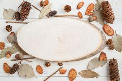 Cross-section of a tree on a wooden background in autumn style . top view with space for text.  stock photo
