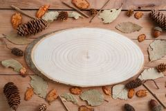Cross-section of a tree on a wooden background in autumn style . top view with space for text.  royalty free stock images