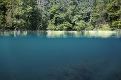 Cross section of the underwater and above-water part of the lake royalty free stock image