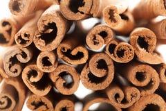 Cross section view of Raw Organic Cinnamon sticks (Cinnamomum verum). Stock Photo