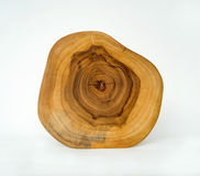 Cross Section Wood Grain Tree Rings Royalty Free Stock Photos