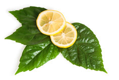 Cross section of yellow lemon with green leaf Stock Image