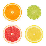 Cross sections of different citrus fruits (isolated) Royalty Free Stock Image