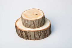 Cross sections of tree trunk on white background Royalty Free Stock Image