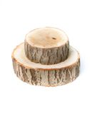 Cross sections of tree trunk on white background Royalty Free Stock Photos