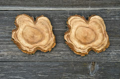 Cross sections of tree trunk  on wooden plank background Stock Photography