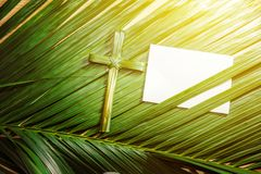 Palm Sunday concept. Cross shape of palm leaf on palm branches with white blank paper and ray in wooden background. Palm Sunday concept royalty free stock photography