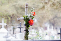 Cross with some roses. Old cross with some roses  show the poor souls forgotten for many people and some graves has been destroyed for the past of the years Royalty Free Stock Image