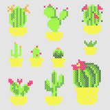 Cross Stitch vector cactuses Stock Images