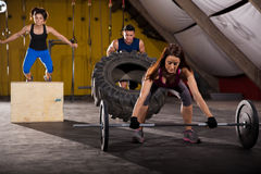 Cross-training in a gym Stock Photos