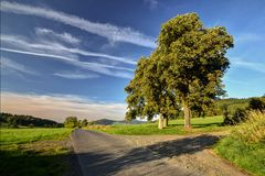 Cross under the lime trees. Cross cholic under the lime trees in rural roads Stock Photo