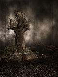 Cross with vines Royalty Free Stock Images