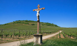 Cross in a vineyard Royalty Free Stock Images