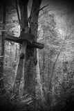 Cross in the wood Royalty Free Stock Photo