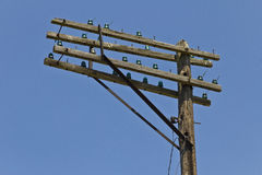 Crossarms of a Former AT&T or Bell System Telephone Pole with Antique Glass Insulators I Stock Image