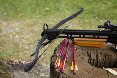 Crossbow arrows on the stub. Crossbow arrows on the stump. Photo by VIPDesignUSA Royalty Free Stock Photography