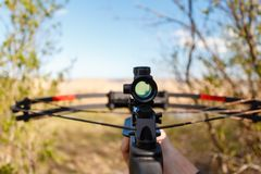 A crossbow with a sight to aim in first person. On the background of the lake. The man preys on wild animals in summer forest royalty free stock photo