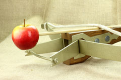 crossbows Imagem de Stock Royalty Free