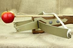 Crossbows Royalty Free Stock Image