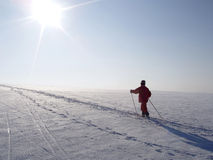 crosscountry narciarka Obraz Stock