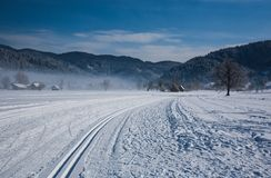 Crosscountry skiing Royalty Free Stock Images