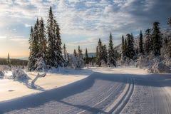 Crosscountryadventure i Jämtland Stock Fotografie