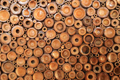 Crosscut of bamboo for background Royalty Free Stock Photography