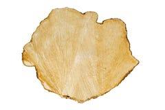 Crosscut di un ceppo dell'albero Immagine Stock Libera da Diritti