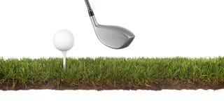 crosscut golfball zieleń zdjęcie royalty free