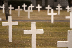 Crosses. At a cemetary meadow Stock Photos