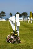 Crosses. Rows of crosses at the Normandy American Cemetery, France with flowers Stock Photo